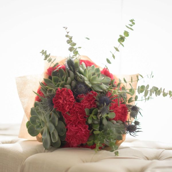 Big Succulent, Carnation, Thistles | Buy Flowers in Dubai UAE | Gifts | Cakes