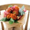 Cymbidium, Celosia, Leucospermum | Buy Flowers in Dubai UAE | Gifts | Cakes