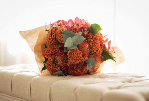 Cymbidium, Celosia, Leucospermum | Buy Flowers in Dubai UAE | Gifts | Cakes