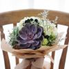 Big Succulent, Hydrangea | Buy Flowers in Dubai UAE | Gifts | Cakes
