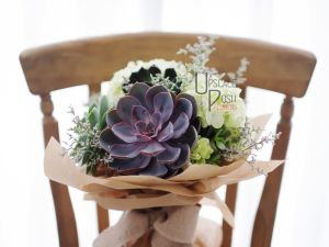Big Succulent, Hydrangea | Buy Flowers in Dubai UAE | Gifts | Cakes