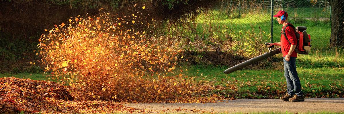 FAQs for Fall Leaf Blower Maintenance