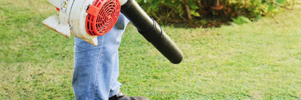 How to Choose the Best Leaf Blower for Any Job