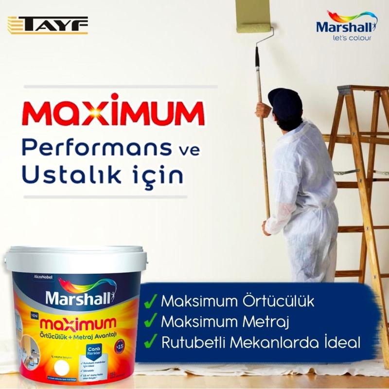 Tayf Ltd