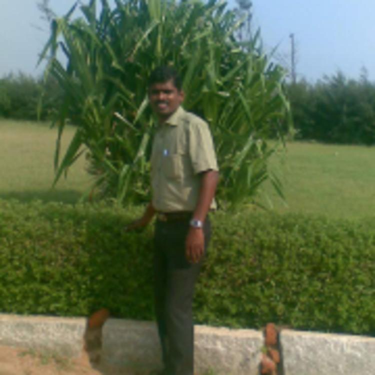 CA. Aruchamy's image