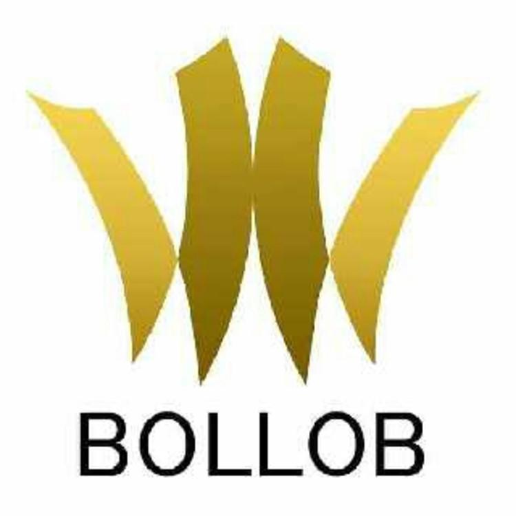 Bollob.com's image