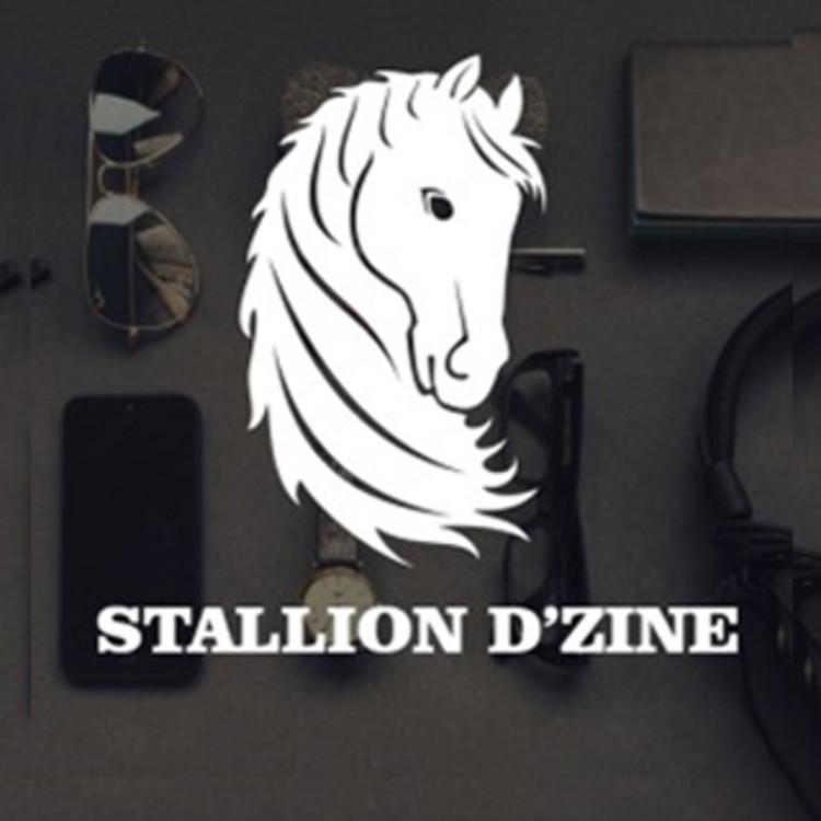 Stallion D'zine 's image