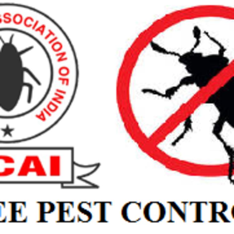 P Free Pest Control's image