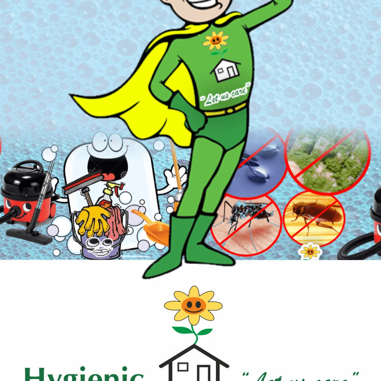 Hygienic Healthy Homes's image
