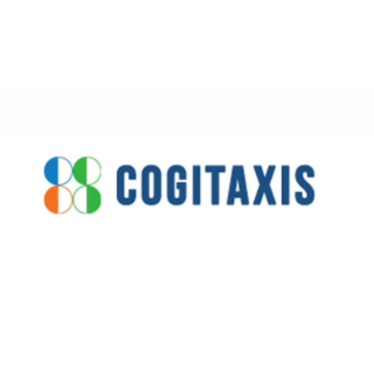 Cogitaxis Consultancy Services's image