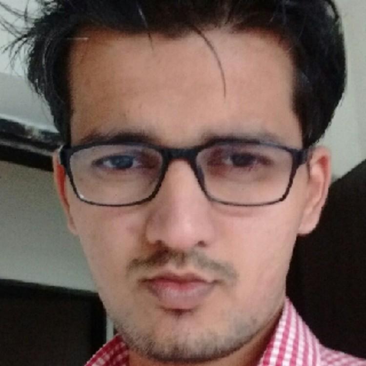 Hardik Mehta's image
