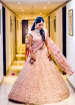 Pink A Shaped Bridal Lehenga With Gold Embroidery by Shyamal & Bhumika Wedding-dresses | Weddings Photos & Ideas