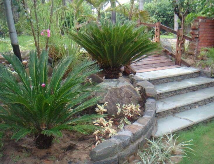 Garden Decor Ideas With Stone Pathway by Pavitra Agarwal Open-spaces Modern | Interior Design Photos & Ideas