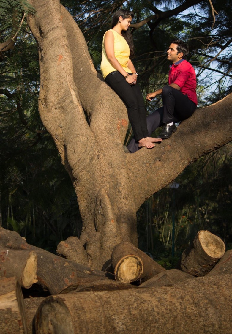 Bride and Groom To-Be Atop a Tree by Vivek Renukaprasad Wedding-photography | Weddings Photos & Ideas