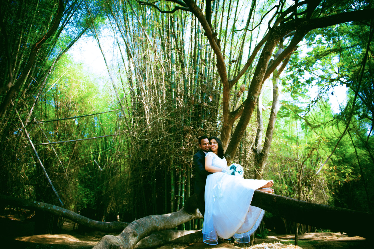 Romance In The Woods! by Bosco's Wedding Management and Media House  Wedding-photography | Weddings Photos & Ideas