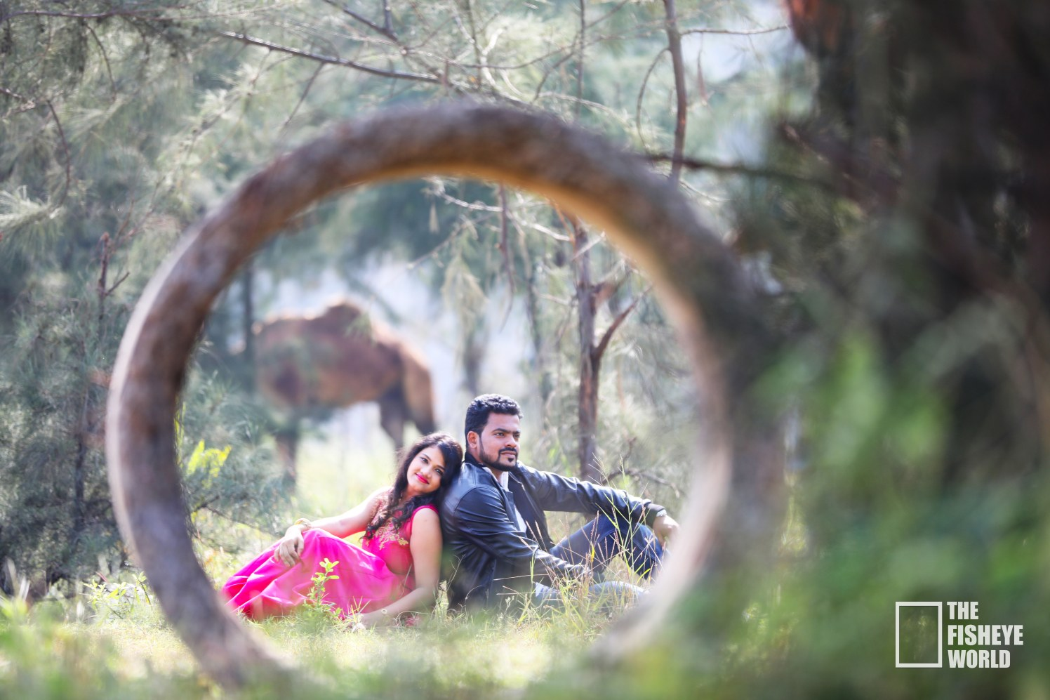 Creative pre wedding idea by The Fisheye world institute of photography and studios Wedding-photography | Weddings Photos & Ideas