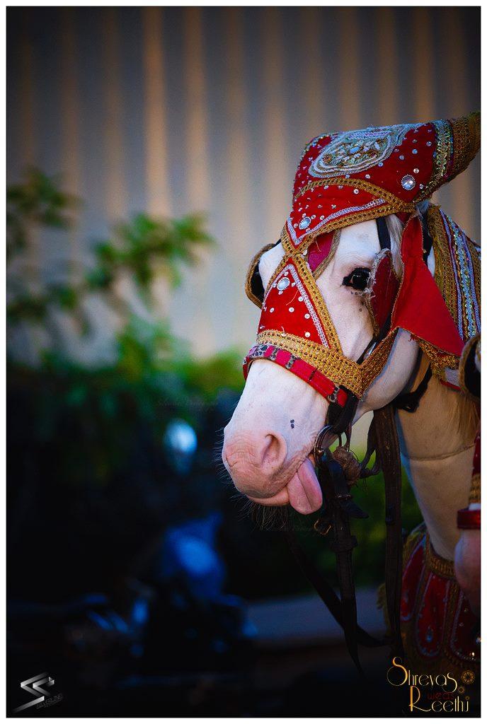 Wedding essentials! by Silverline Photography  Wedding-photography | Weddings Photos & Ideas