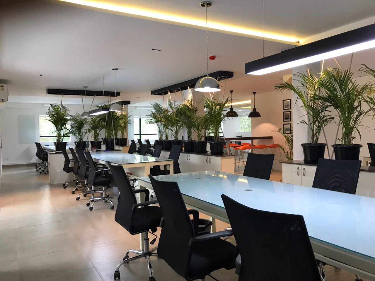 Green Is the New Black by Dineshkumar Sekar Modern | Interior Design Photos & Ideas