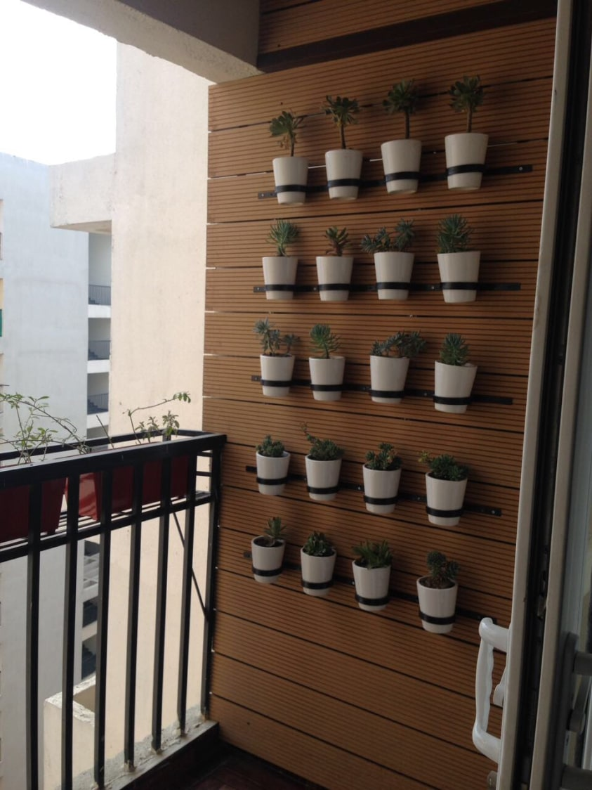 Balcony With Hanging Flower Pots by Vaibhav gaba Open-spaces Contemporary   Interior Design Photos & Ideas