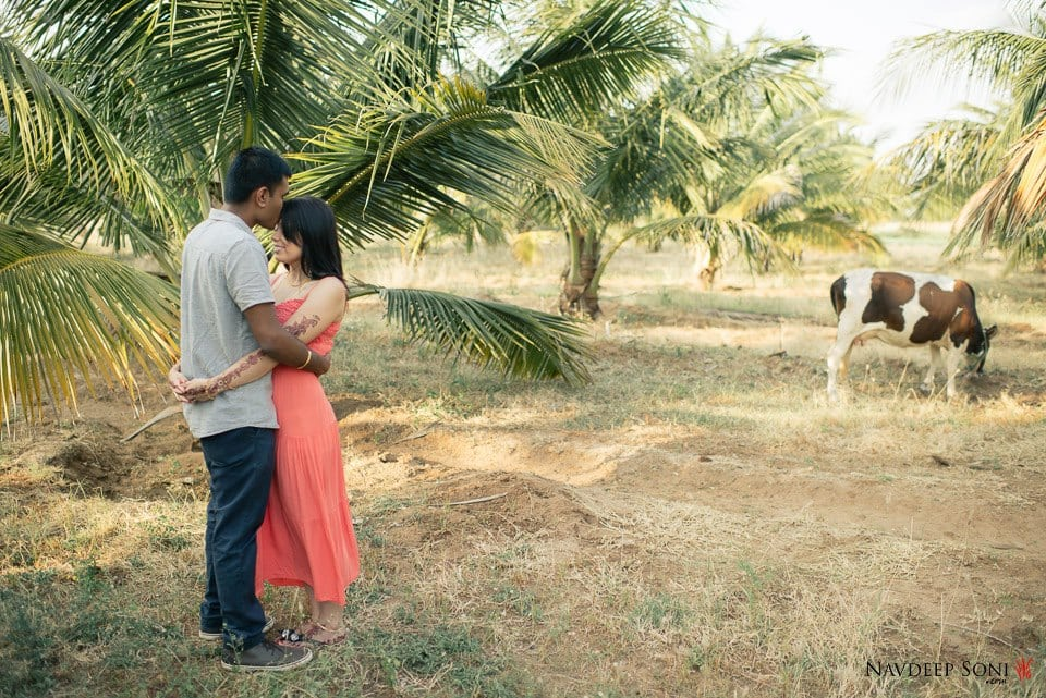 Exquisite Nature Themed Pre-Wedding Shoot by Navdeep Soni Wedding-photography | Weddings Photos & Ideas