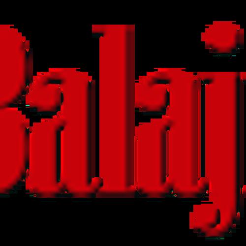 Balaji pest control