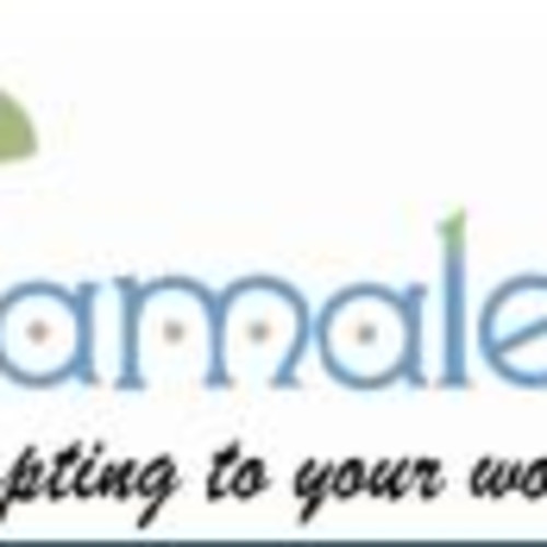 Camaleon home cleaning services.