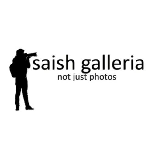Saish Galleria : not just photos