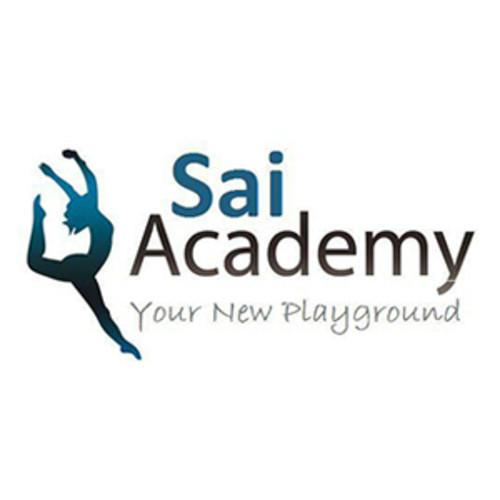 SAI ACADEMY -Your new playground