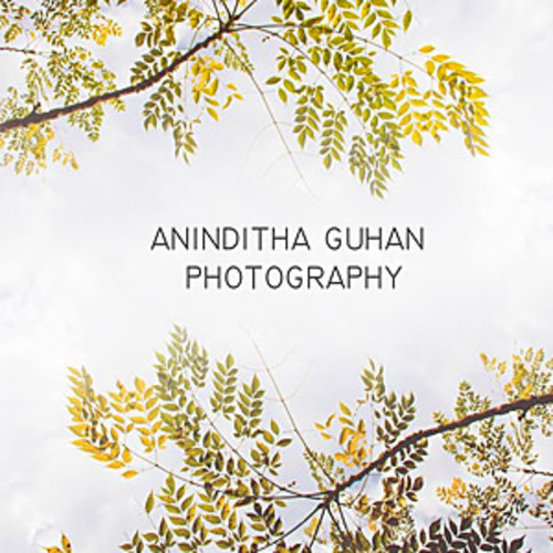 Aninditha Guhan Photography