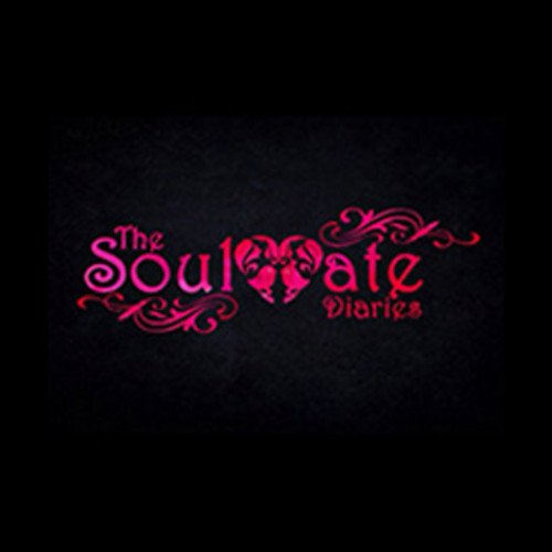 The Soulmate Diaries