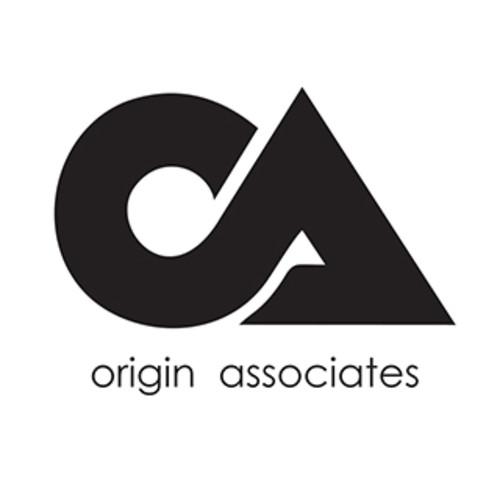 Origin Associates