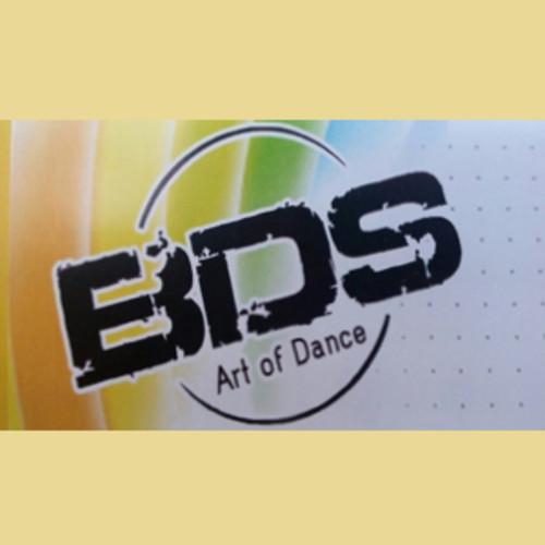 BASHA DANCE MUSIC STUDIO BDS