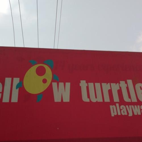 Yellow Turrtle