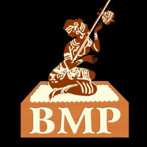 BMP Fire Bhangra Crew And  Academy