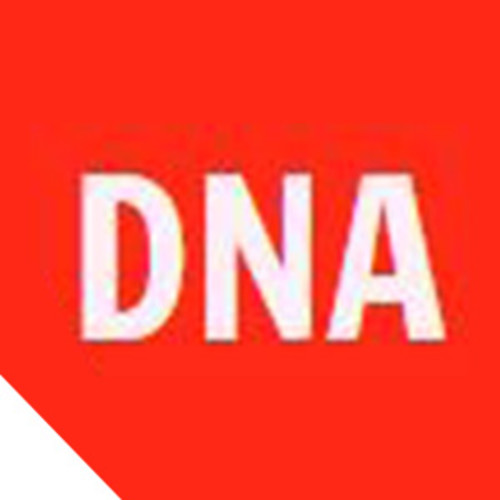 DNA Packers and Movers