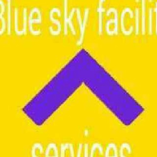 blue sky facility services