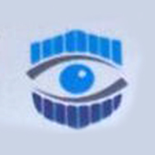 Blue Moon Security Systems