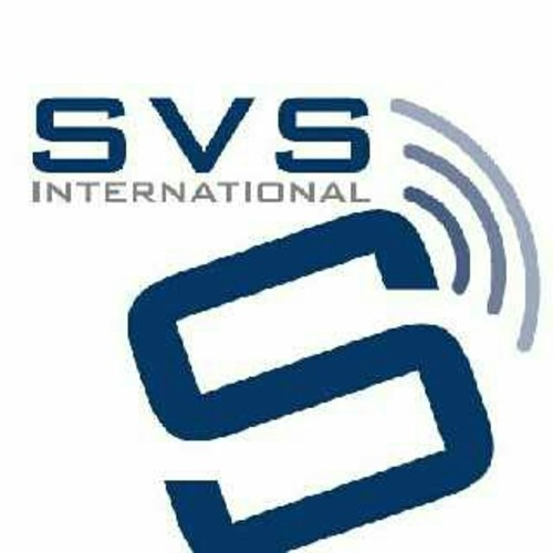 SVS Visa Services India Pvt Ltd