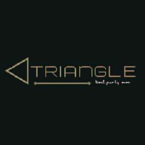 Triangle Best Party Ever