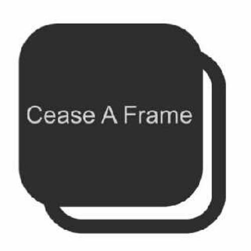 Cease A Frame Photography
