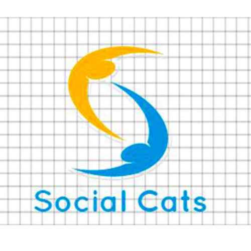 Social Cats- The Event Organisers