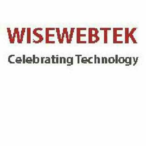 WiseWebTek