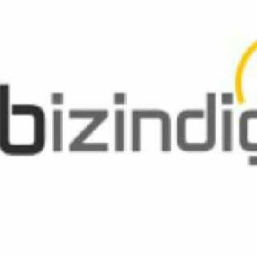 BIZINDIGO.COM