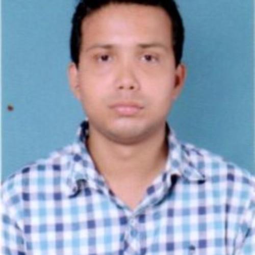 Subhankar Roy
