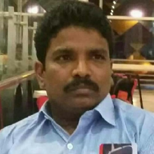 Palanimuthu M