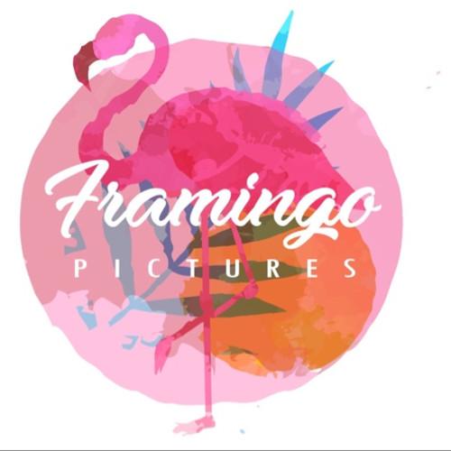Framingo Pictures