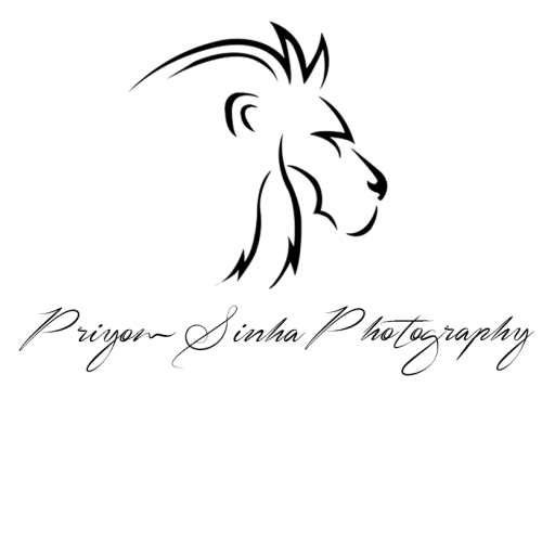 Priyom Sinha Photography