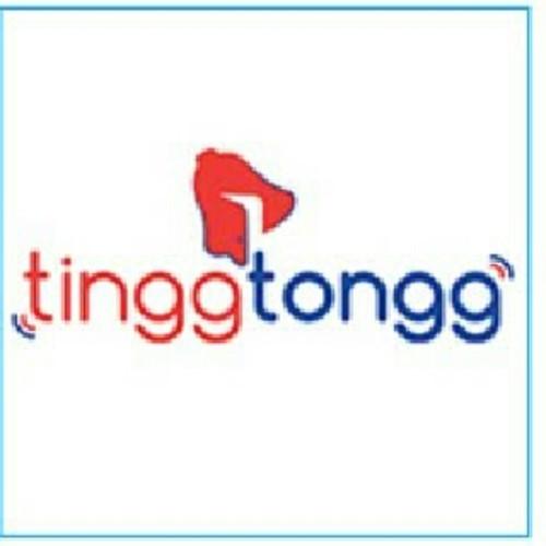 TinggTongg Solutions