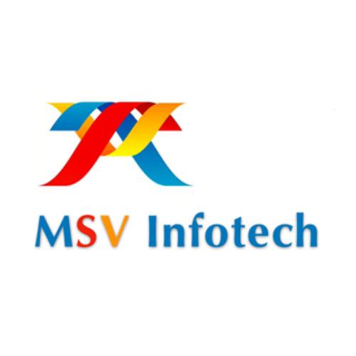 MSV Infotech