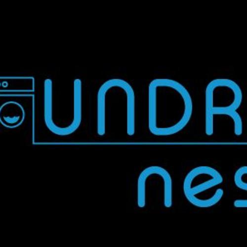 Laundry Nest